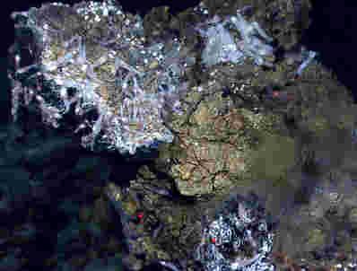 新的研究测试理论,生命起源于深海通风口