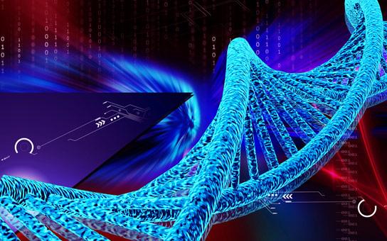 科学家工程师第一生物与扩展的遗传字母表