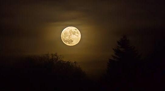 科学家发现月球阶段和睡眠之间没有相关性